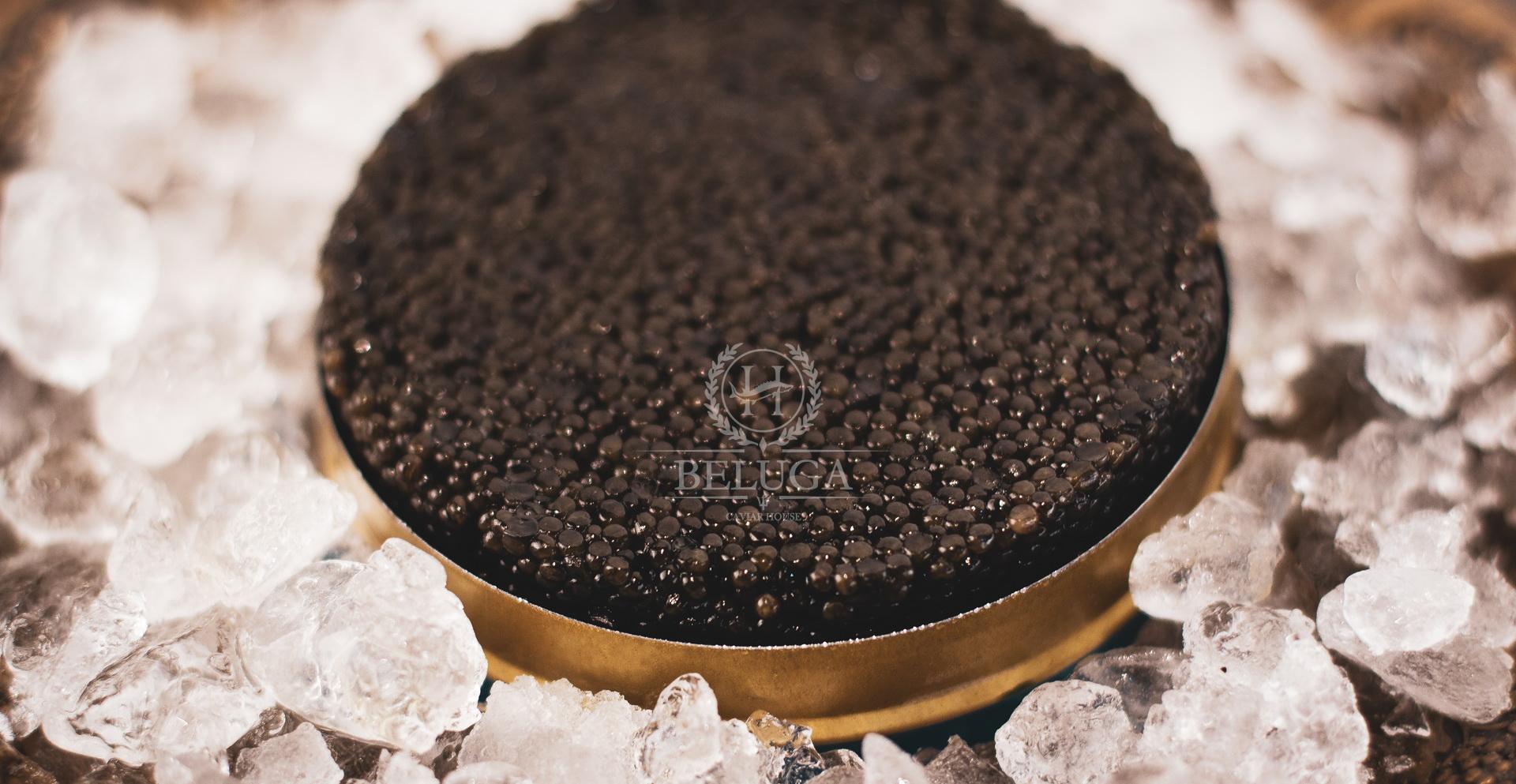 Black Beluga caviar